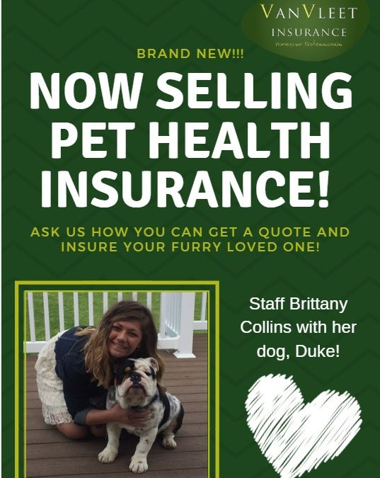 VanVleet Insurance now partnering with FIGO to offer Pet Health Insurance